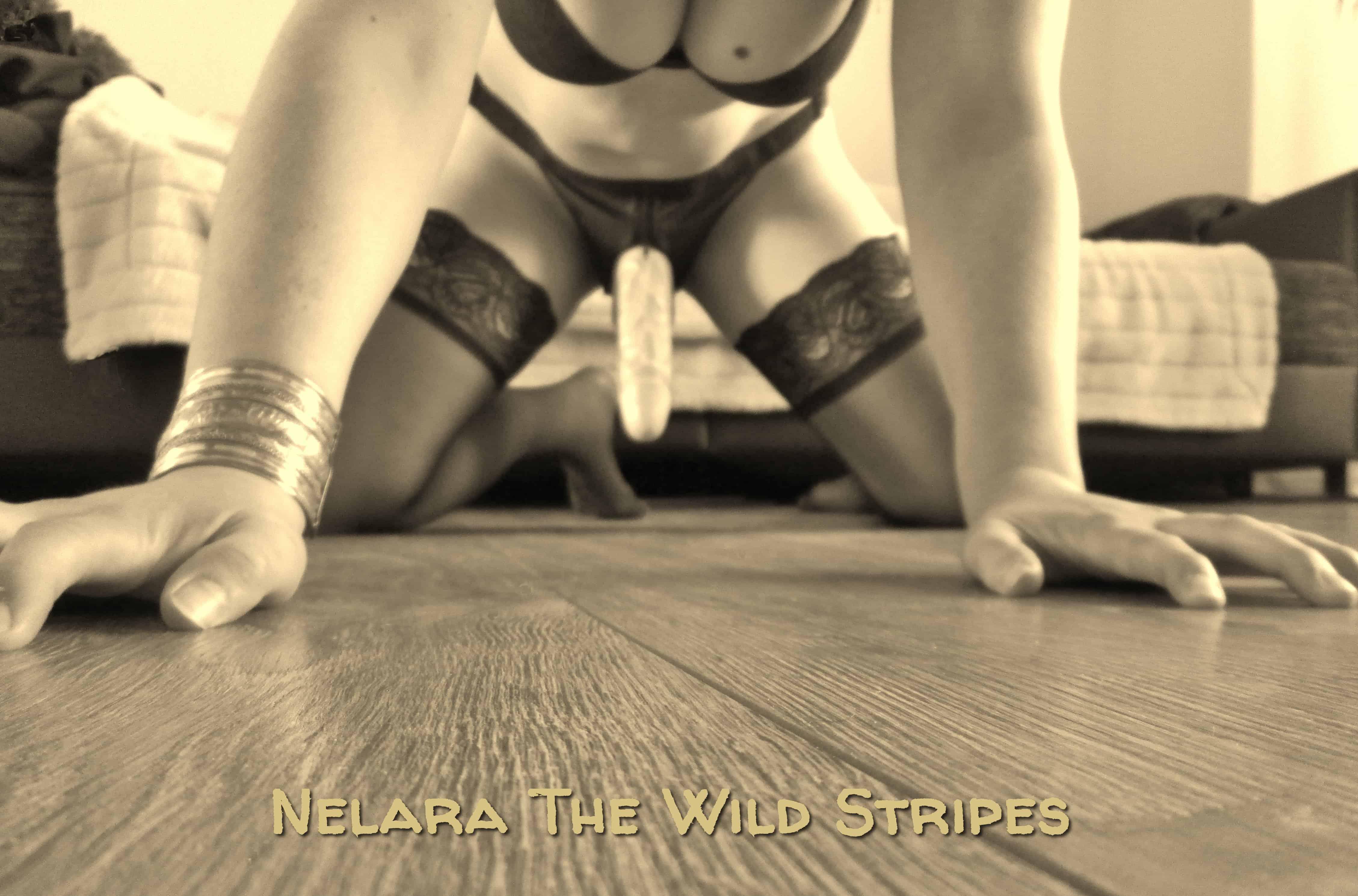 Tolle Bilder von Nelara Wild